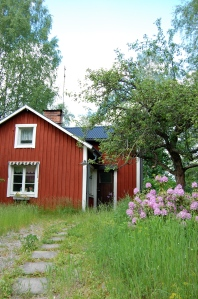 Röd stuga , gräsmatta och äppelträd.