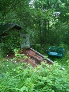 Liten faluröd stuga och ett tegeltak inbäddade i grönska